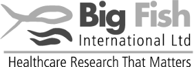 Big Fish International Ltd